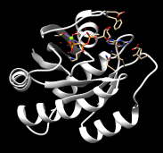 121p-shift-PDB.png