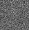 121p-noise0.5section-mrcImageResolutionEstimateForFilaments.png